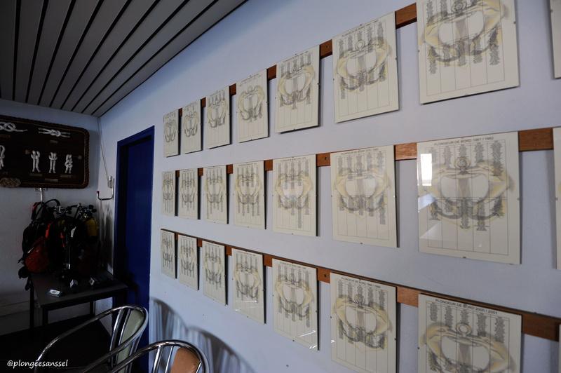 la petite Histoire des plongeurs de la Marine Nationale _dsc0015