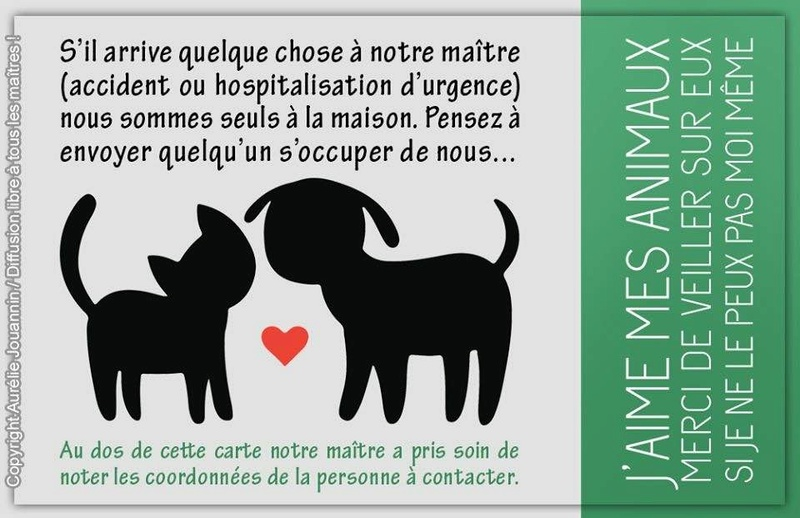 J'AIME MES ANIMAUX 16105710