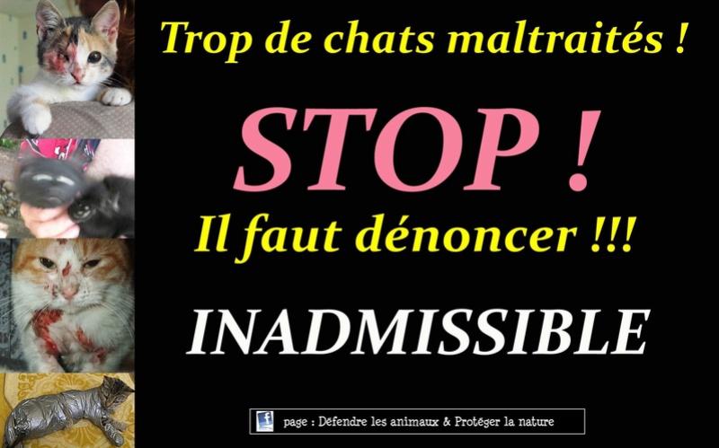 STOP ........ 88381111