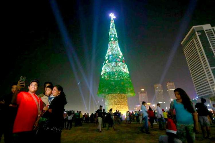 World's tallest Christmas Tree : Opening at 7 tonight Xt10