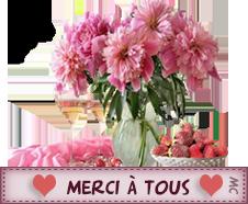 JOYEUX ANNIVERSAIRE LISE Merci_18