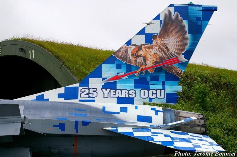 Cérémonie d' adieu des derniers F4F Phantom 2 à Wittmund! Imgp7612