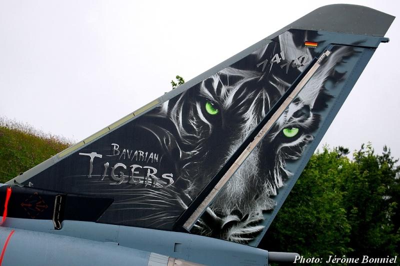 Cérémonie d' adieu des derniers F4F Phantom 2 à Wittmund! Imgp7614