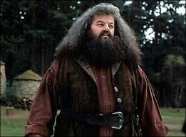 Deviner le film ou une série TV d'après une photo Hagrid11