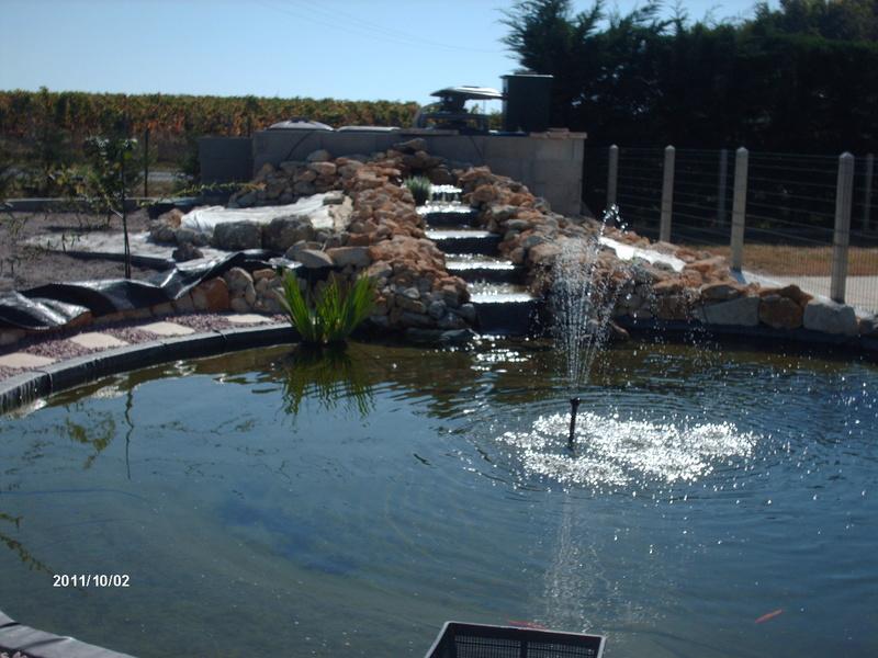Bassin de 16000 litres Hpim1211
