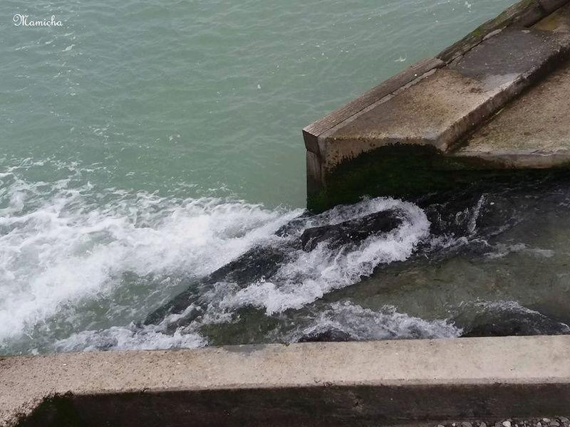 Au fil de la Veules (Seine Maritime) 0510