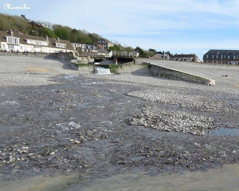 Au fil de la Veules (Seine Maritime) 0710