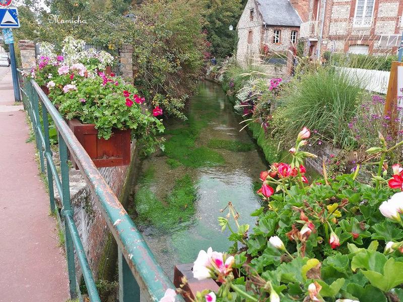 Au fil de la Veules (Seine Maritime) 6410