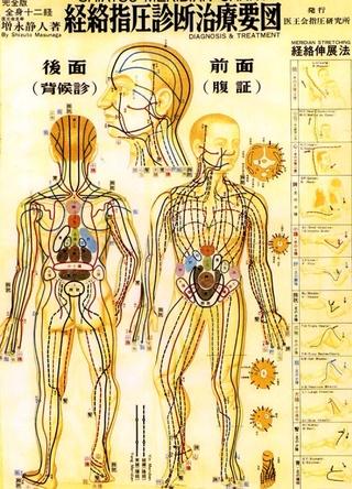 La théorie des méridiens face à la science Image19