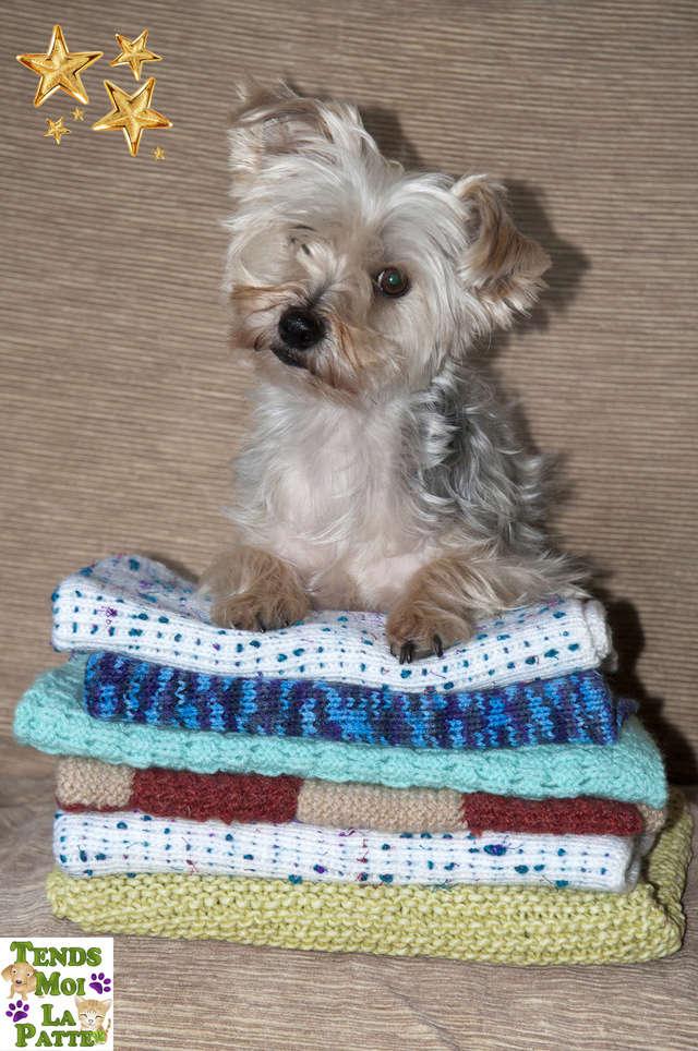 Vente de couvertures tricotées par des bénévoles  Couver10