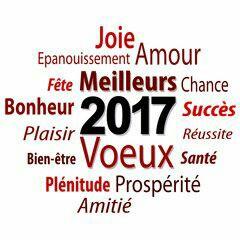 Bonne année !   C94d2410