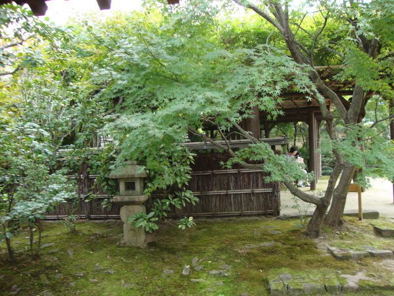 日本に行きましょう ! [Photos] Dsc07910