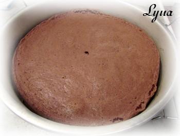 Gâteau mousse au chocolat et profiteroles Gynois10