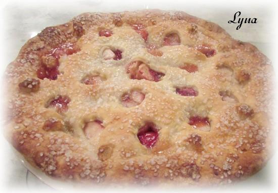 Tarte aux fraises et pommes Tarte_14
