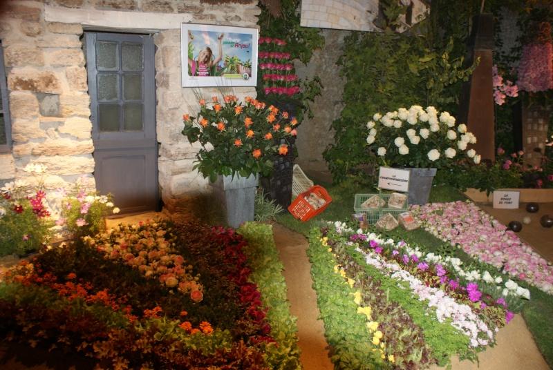 Les Journées de la Rose 2013 à DOUE LA FONTAINE (49) 2013_j35