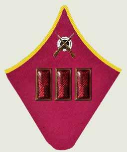 Insignes de grade soviétiques Rkka4027