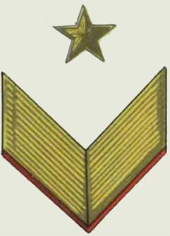 Insignes de grade soviétiques Rkka4031