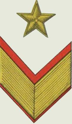 Insignes de grade soviétiques Rkka4032