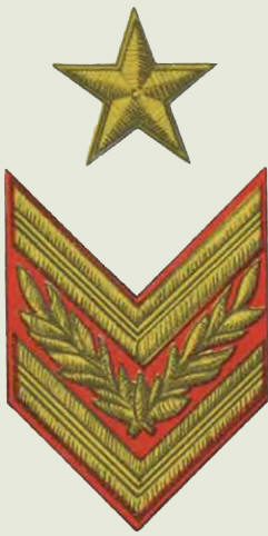 Insignes de grade soviétiques Rkka4034