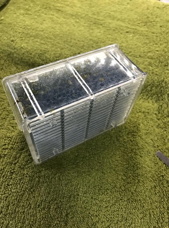 Démontage, ouverture et nettoyage cartouches Biobox Img_5920