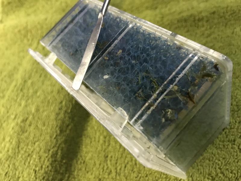 Démontage, ouverture et nettoyage cartouches Biobox Img_5923