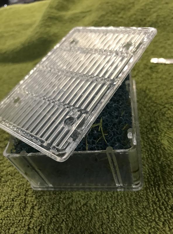 Démontage, ouverture et nettoyage cartouches Biobox Img_5926