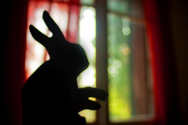 """""""Le langage des mains"""" Lapina10"""