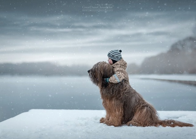 De sublimes photos d'enfants tout-petits et leurs gros chiens 1010