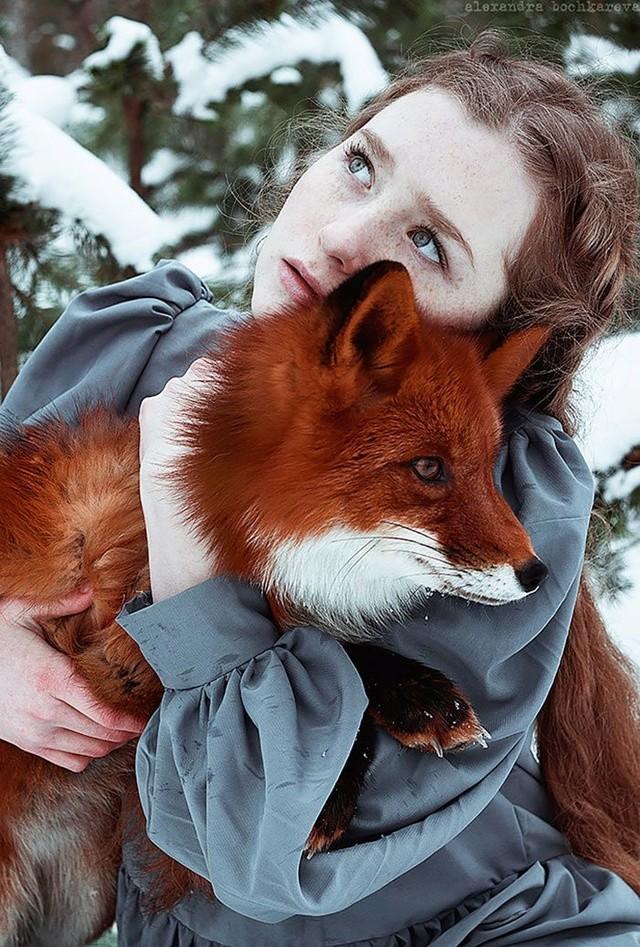 Elle créer des clichés sublimes avec des renards... 1011