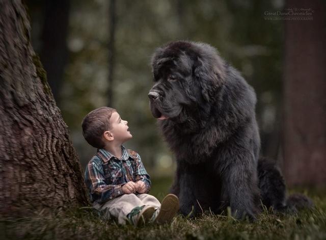 De sublimes photos d'enfants tout-petits et leurs gros chiens 1110