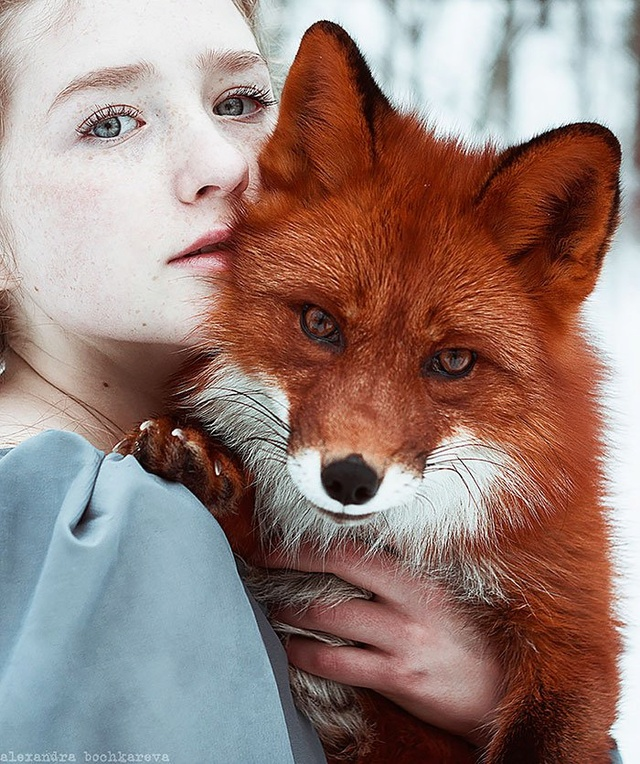 Elle créer des clichés sublimes avec des renards... 1111