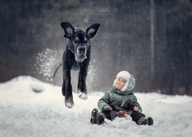 De sublimes photos d'enfants tout-petits et leurs gros chiens 1310