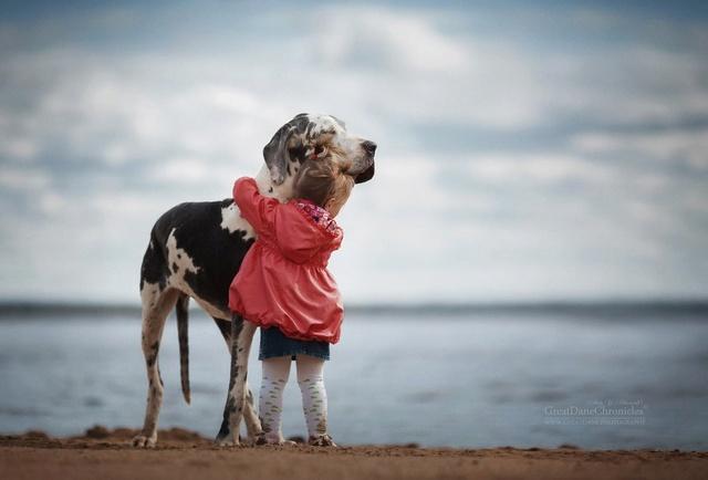 De sublimes photos d'enfants tout-petits et leurs gros chiens 1410