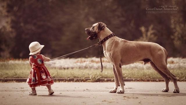 De sublimes photos d'enfants tout-petits et leurs gros chiens 1510