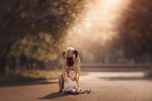 De sublimes photos d'enfants tout-petits et leurs gros chiens 1710