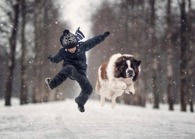 De sublimes photos d'enfants tout-petits et leurs gros chiens 2010