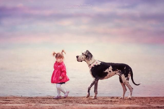 De sublimes photos d'enfants tout-petits et leurs gros chiens 210