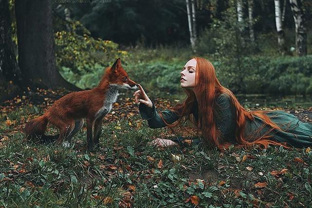 Elle créer des clichés sublimes avec des renards... 311