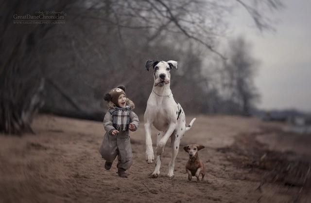De sublimes photos d'enfants tout-petits et leurs gros chiens 510