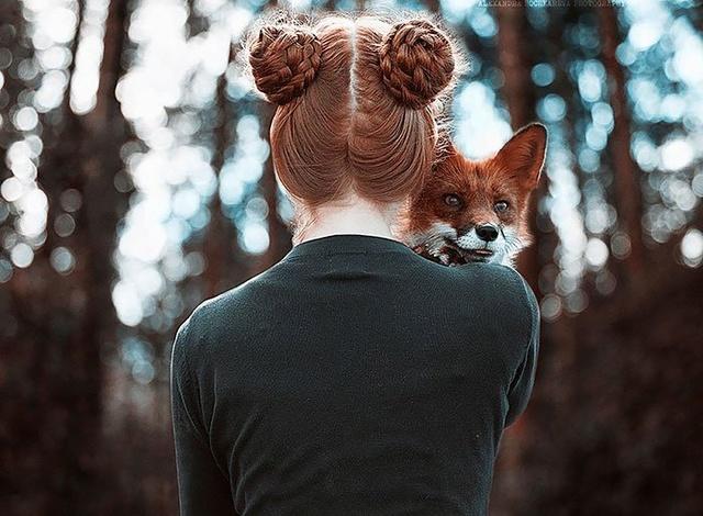 Elle créer des clichés sublimes avec des renards... 511