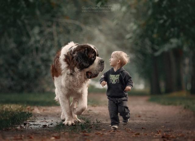 De sublimes photos d'enfants tout-petits et leurs gros chiens 610