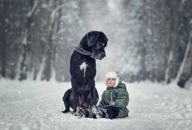 De sublimes photos d'enfants tout-petits et leurs gros chiens 710