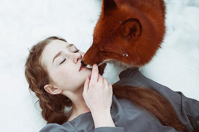 Elle créer des clichés sublimes avec des renards... 811