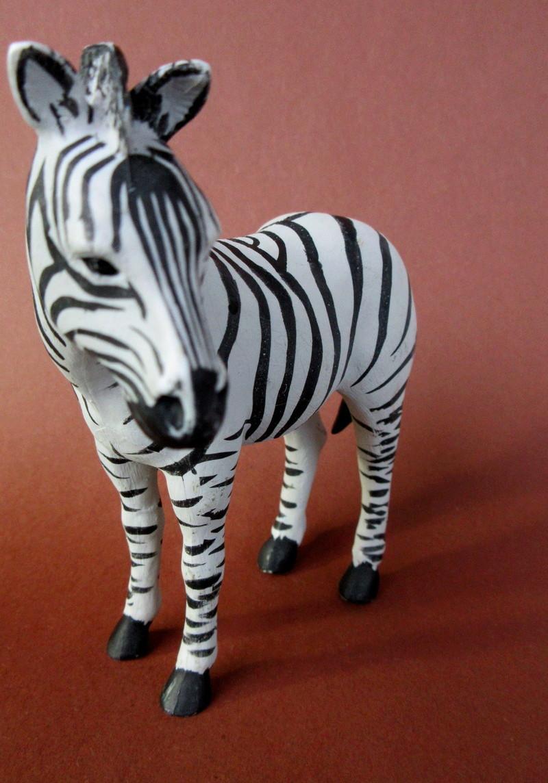Walkaround:  Zebra by Sol90 by 75senta75 Img_1635