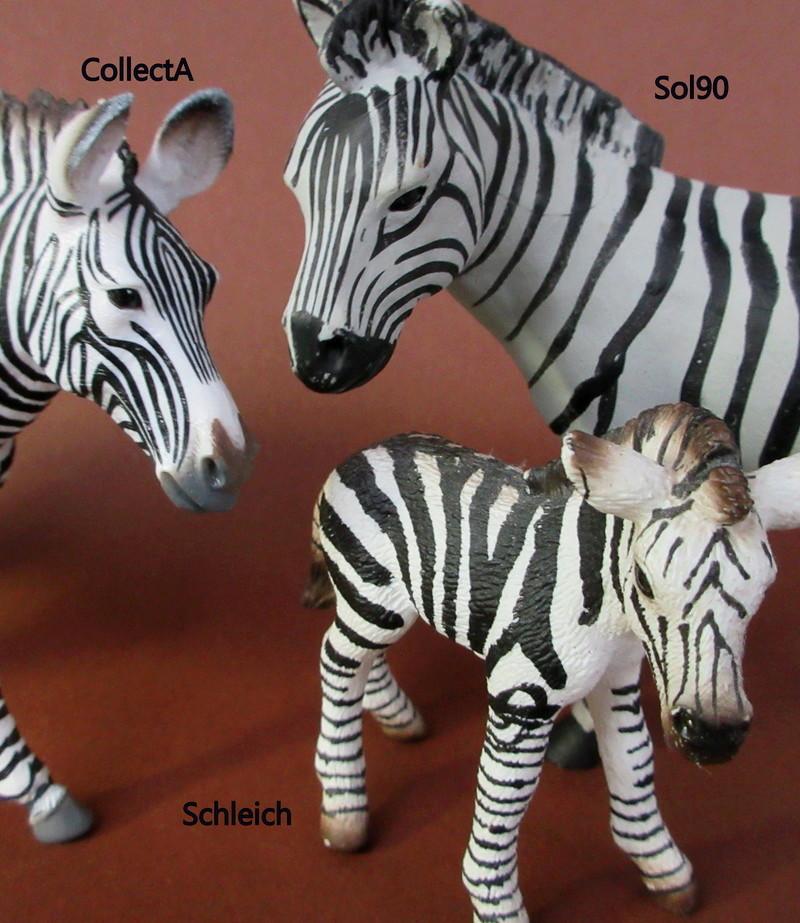 Walkaround:  Zebra by Sol90 by 75senta75 Img_1735