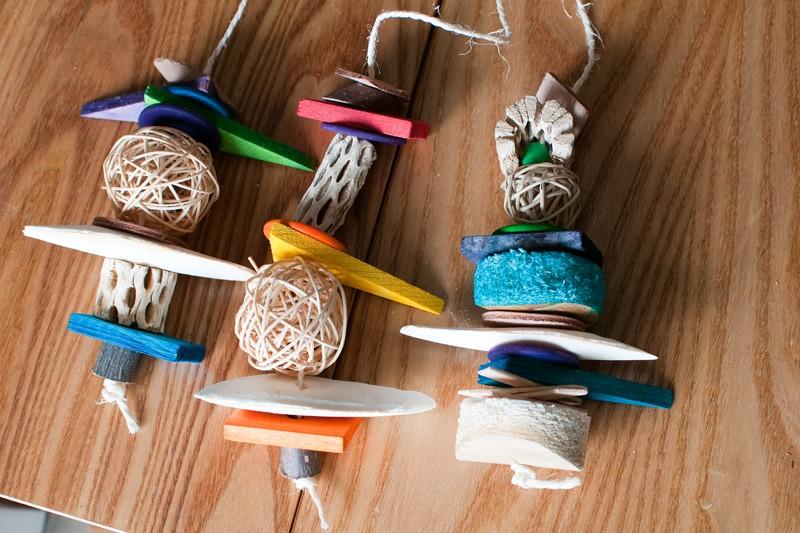 Jouets pour perruches et perroquet ROSIE Dsc_0012