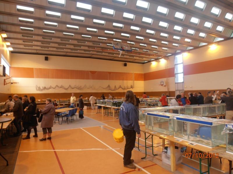 Congrès AFC 5/6/7 novembre 2012 Pa070019