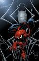 Pour patienter - Page 6 Spider13