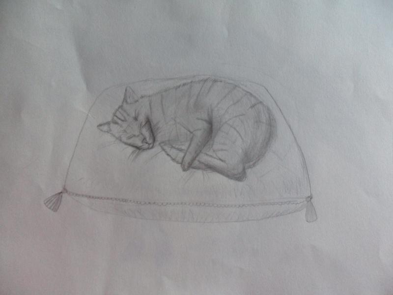 Les pitis dessins de Lady Bubulle Sam_2211