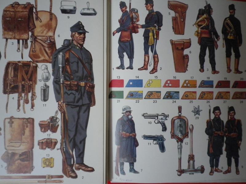 uniformes austro-hongrois Imgp3729